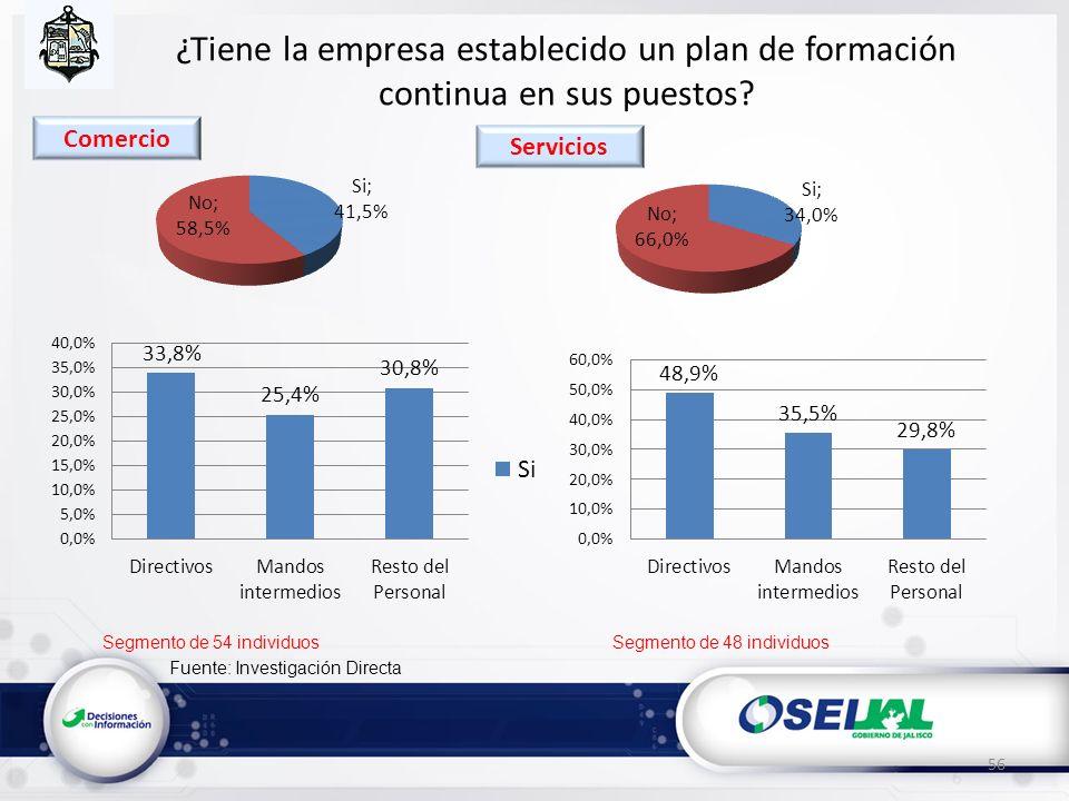 Fuente: Investigación Directa ¿Tiene la empresa establecido un plan de formación continua en sus puestos? 56 Segmento de 54 individuosSegmento de 48 i
