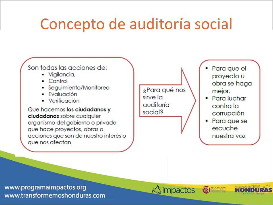 Concepto de auditoría social