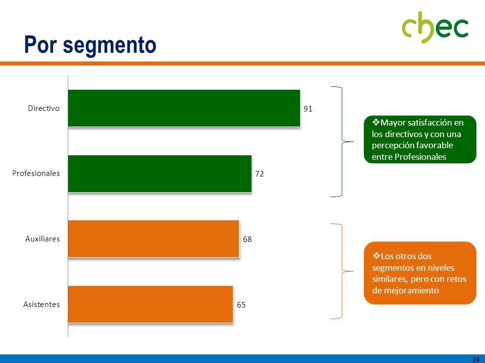 Por segmento 24 Mayor satisfacción en los directivos y con una percepción favorable entre Profesionales Los otros dos segmentos en niveles similares, pero con retos de mejoramiento