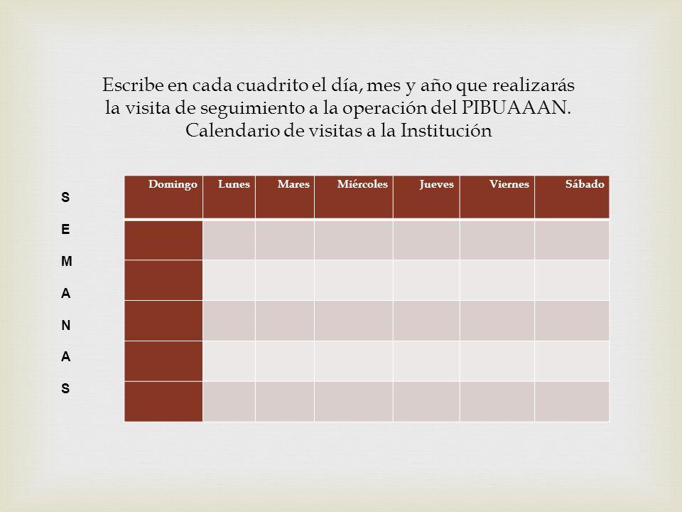 DomingoLunesMaresMiércolesJuevesViernesSábado Escribe en cada cuadrito el día, mes y año que realizarás la visita de seguimiento a la operación del PI