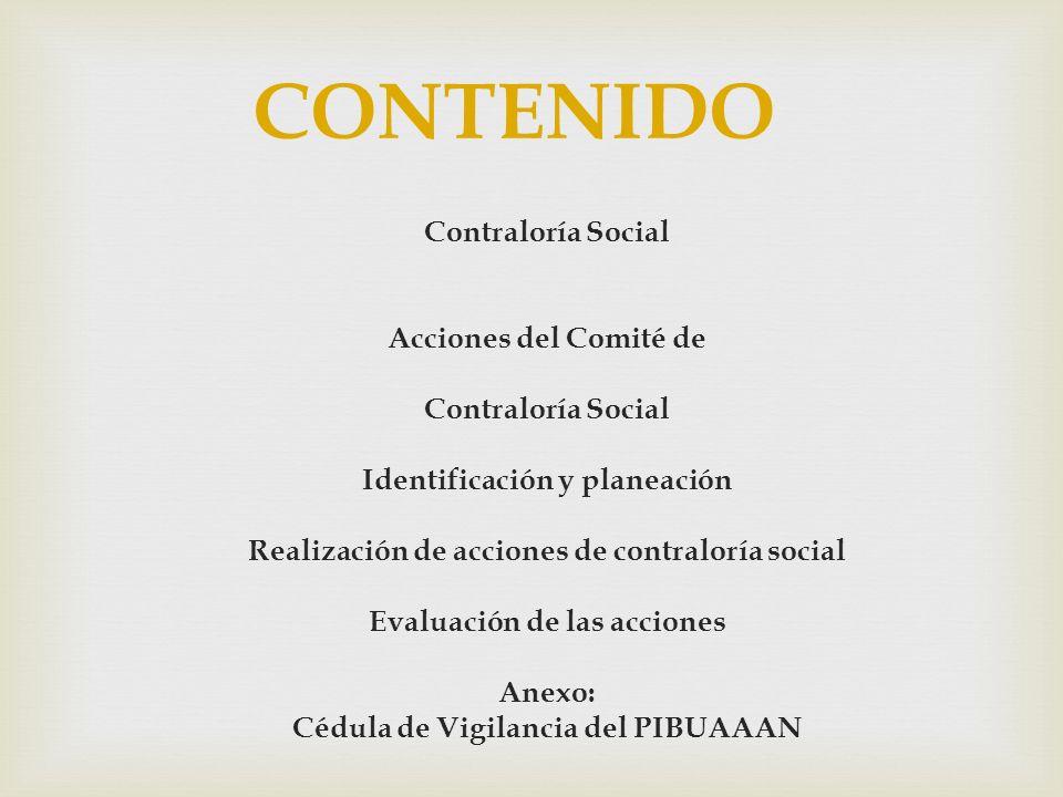 CONTENIDO Contraloría Social Acciones del Comité de Contraloría Social Identificación y planeación Realización de acciones de contraloría social Evalu