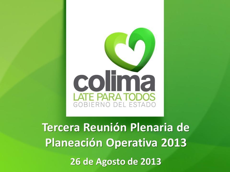 Tercera Reunión Plenaria de Planeación Operativa 2013 26 de Agosto de 2013