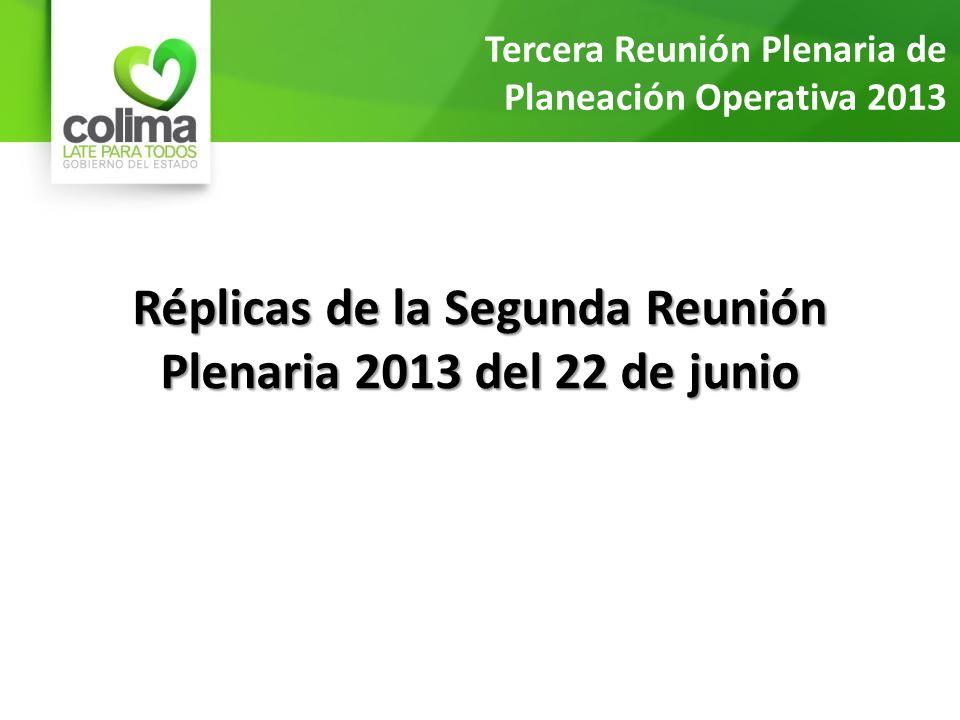 Réplicas de la Segunda Reunión Plenaria 2013 del 22 de junio Tercera Reunión Plenaria de Planeación Operativa 2013