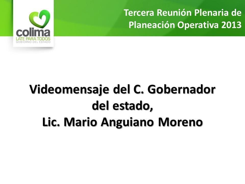 Videomensaje del C. Gobernador del estado, Lic. Mario Anguiano Moreno Tercera Reunión Plenaria de Planeación Operativa 2013