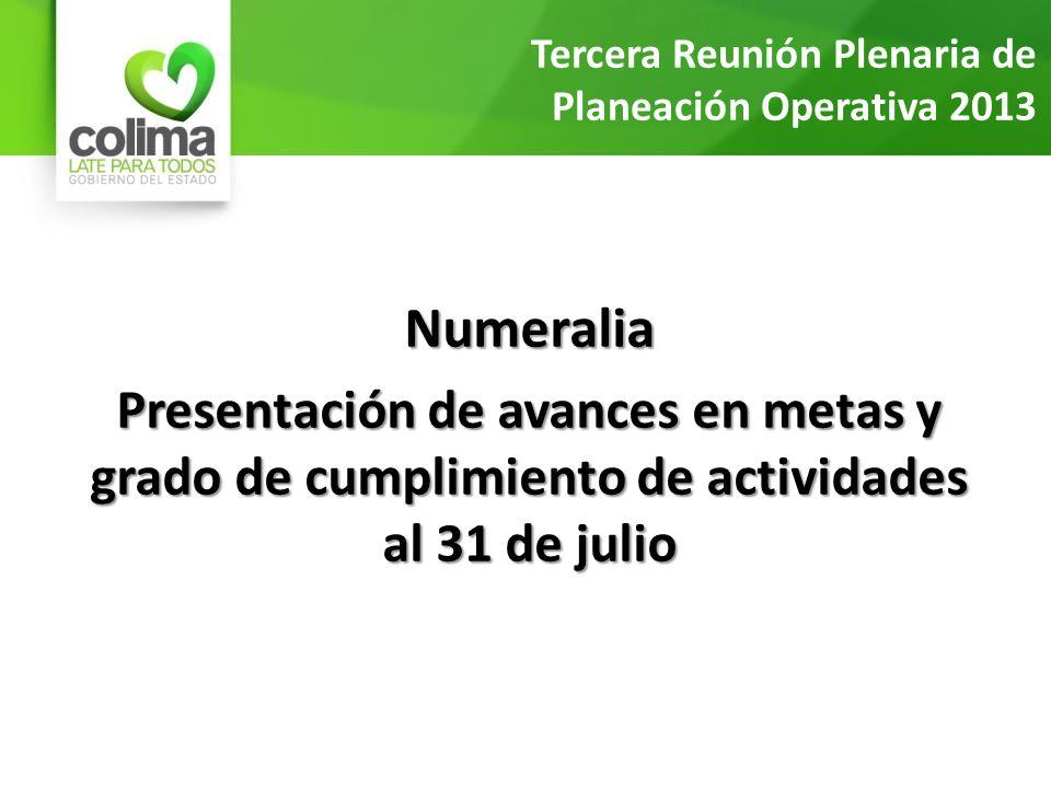 Numeralia Presentación de avances en metas y grado de cumplimiento de actividades al 31 de julio Tercera Reunión Plenaria de Planeación Operativa 2013