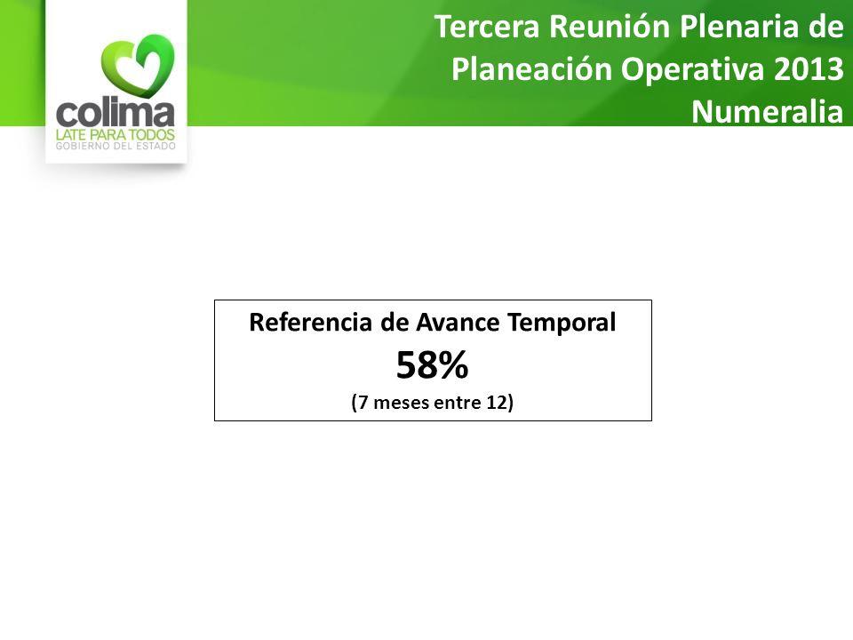Tercera Reunión Plenaria de Planeación Operativa 2013 Numeralia Referencia de Avance Temporal 58% (7 meses entre 12)