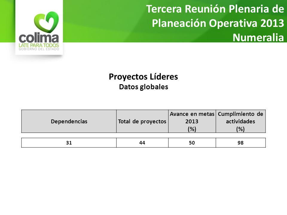 Proyectos Líderes Datos globales Tercera Reunión Plenaria de Planeación Operativa 2013 Numeralia al 20 de marzo DependenciasTotal de proyectos Avance en metas 2013 (%) Cumplimiento de actividades (%) 31445098