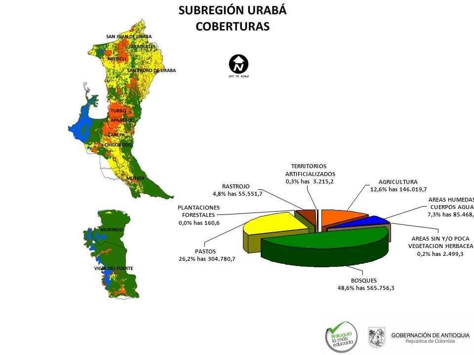 PASTOS 26,2% has 304.780,7 BOSQUES 48,6% has 565.756,3 PLANTACIONES FORESTALES 0,0% has 160,6 RASTROJO 4,8% has 55.551,7 AGRICULTURA 12,6% has 146.019