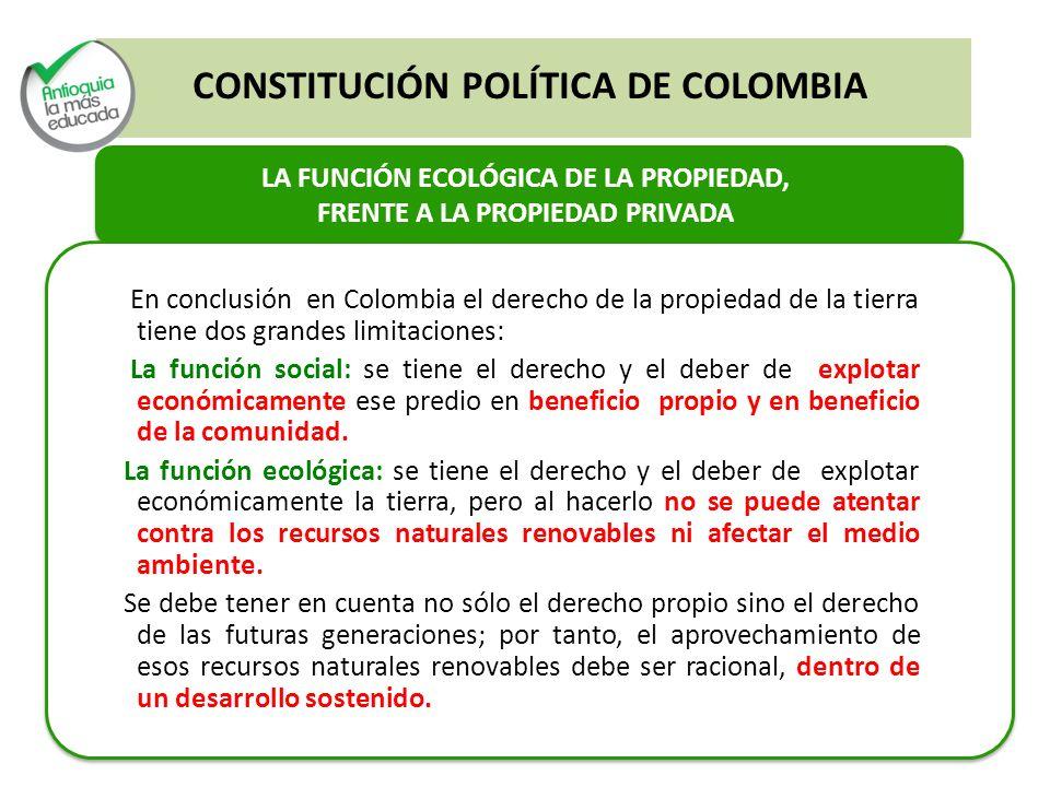 LA FUNCIÓN ECOLÓGICA DE LA PROPIEDAD FRENTE A LA PROPIEDAD PRIVADA FUNCION SOCIAL DE LA PROPIEDAD FUNCION SOCIAL DE LA PROPIEDAD Productiva (Uso) Productiva (Uso) Riqueza Individual y Colectiva Preservación de Valores e Identidad Cultural Arraigo Social FUNCION ECOLOGICA DE LA PROPIEDAD FUNCION ECOLOGICA DE LA PROPIEDAD