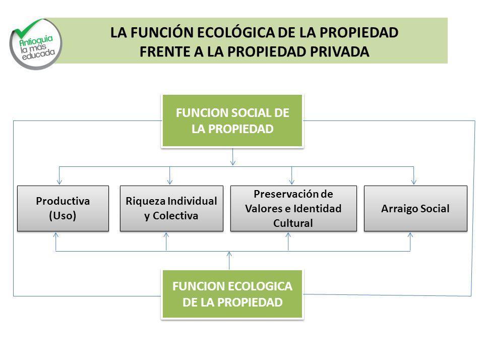 LA FUNCIÓN ECOLÓGICA DE LA PROPIEDAD FRENTE A LA PROPIEDAD PRIVADA FUNCION SOCIAL DE LA PROPIEDAD FUNCION SOCIAL DE LA PROPIEDAD Productiva (Uso) Prod