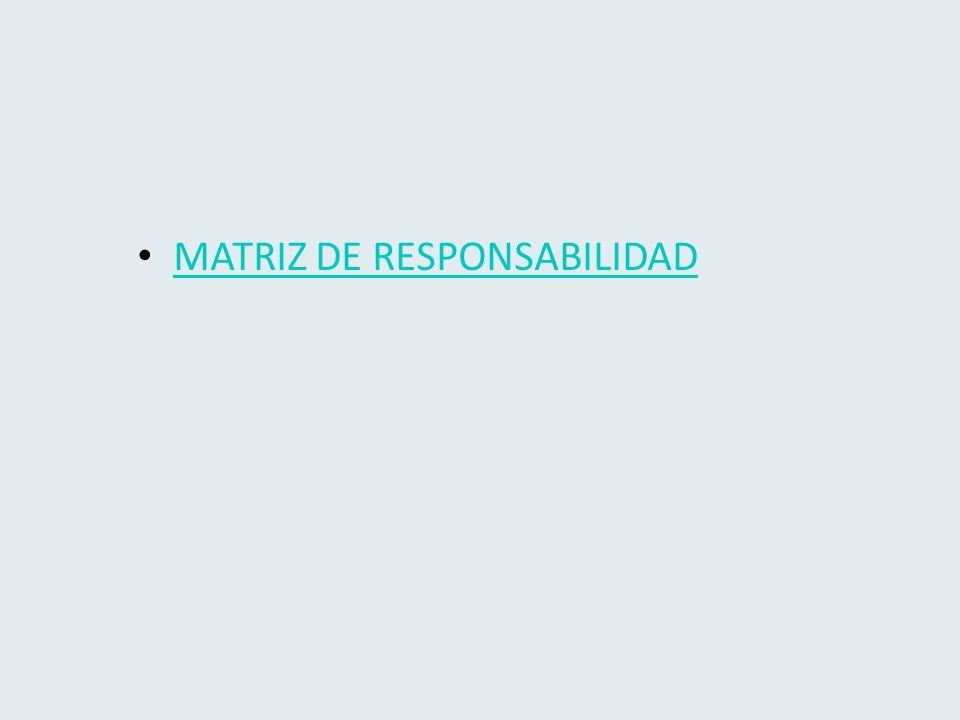 MATRIZ DE RESPONSABILIDAD