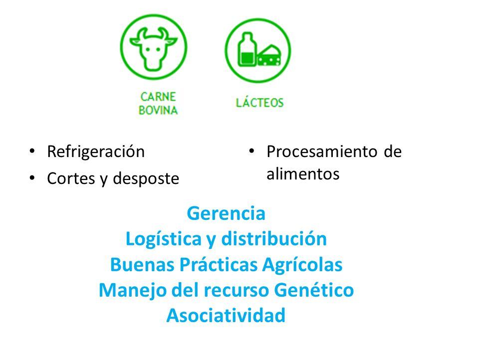 Refrigeración Cortes y desposte Procesamiento de alimentos Gerencia Logística y distribución Buenas Prácticas Agrícolas Manejo del recurso Genético As