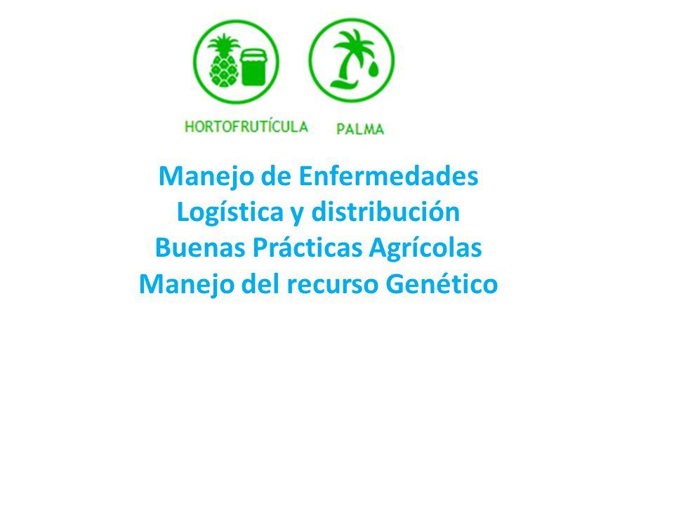 Manejo de Enfermedades Logística y distribución Buenas Prácticas Agrícolas Manejo del recurso Genético