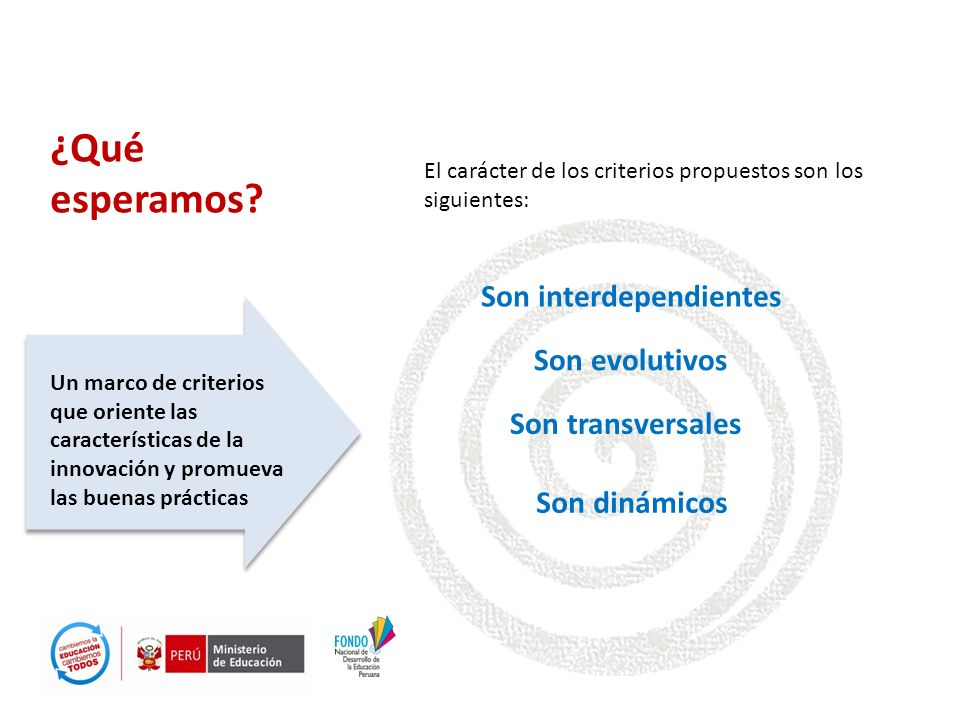 ¿Qué esperamos? Un marco de criterios que oriente las características de la innovación y promueva las buenas prácticas Son evolutivos El carácter de l