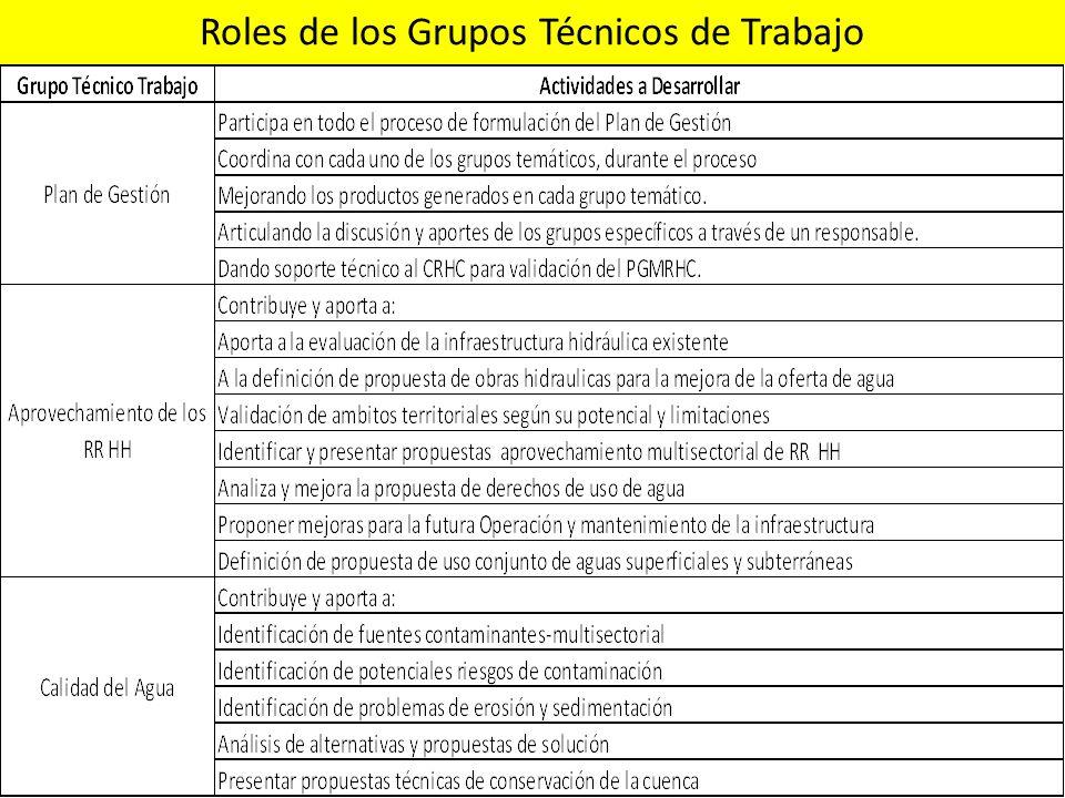 Roles de los Grupos Técnicos de Trabajo