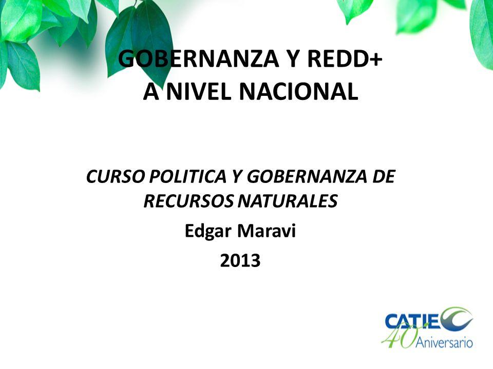 GOBERNANZA Y REDD+ A NIVEL NACIONAL CURSO POLITICA Y GOBERNANZA DE RECURSOS NATURALES Edgar Maravi 2013