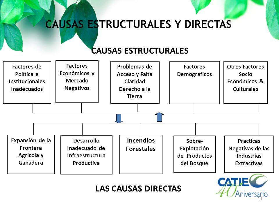 CAUSAS ESTRUCTURALES Y DIRECTAS 11 CAUSAS ESTRUCTURALES Factores Económicos y Mercado Negativos Problemas de Acceso y Falta Claridad Derecho a la Tier