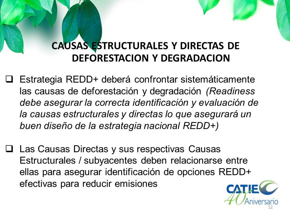 CAUSAS ESTRUCTURALES Y DIRECTAS DE DEFORESTACION Y DEGRADACION 12 Estrategia REDD+ deberá confrontar sistemáticamente las causas de deforestación y degradación (Readiness debe asegurar la correcta identificación y evaluación de la causas estructurales y directas lo que asegurará un buen diseño de la estrategia nacional REDD+) Las Causas Directas y sus respectivas Causas Estructurales / subyacentes deben relacionarse entre ellas para asegurar identificación de opciones REDD+ efectivas para reducir emisiones