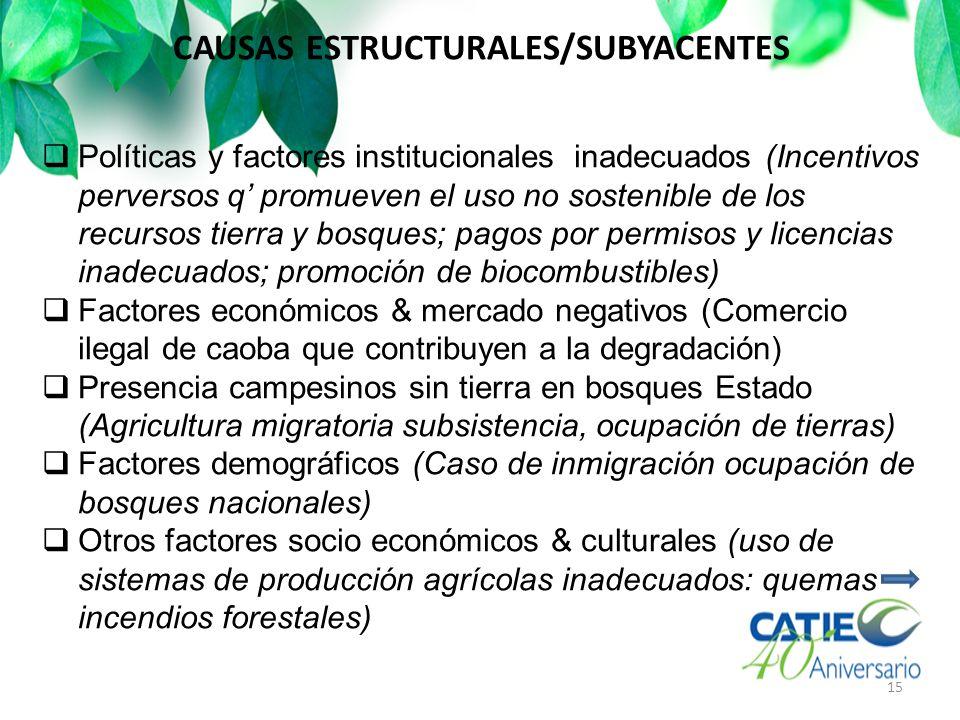 CAUSAS ESTRUCTURALES/SUBYACENTES 15 Políticas y factores institucionales inadecuados (Incentivos perversos q promueven el uso no sostenible de los rec