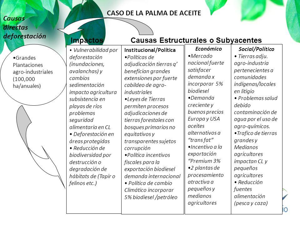 Impactos Causas Estructurales o Subyacentes Grandes Plantaciones agro-industriales (100,000 ha/anuales) Institucional/Política Políticas de adjudicaci
