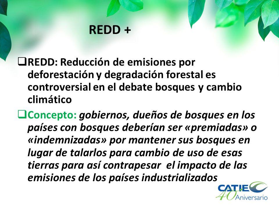 REDD: Reducción de emisiones por deforestación y degradación forestal es controversial en el debate bosques y cambio climático Concepto: gobiernos, dueños de bosques en los países con bosques deberían ser «premiadas» o «indemnizadas» por mantener sus bosques en lugar de talarlos para cambio de uso de esas tierras para así contrapesar el impacto de las emisiones de los países industrializados REDD +