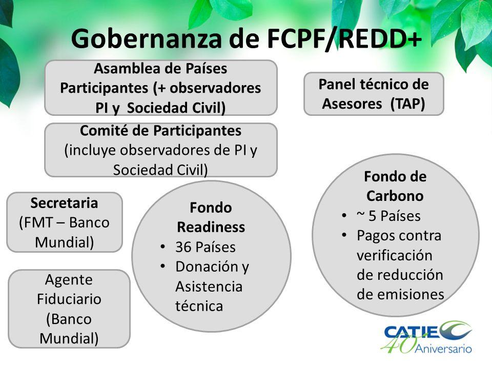 Gobernanza de FCPF/REDD+ Asamblea de Países Participantes (+ observadores PI y Sociedad Civil) Comité de Participantes (incluye observadores de PI y S