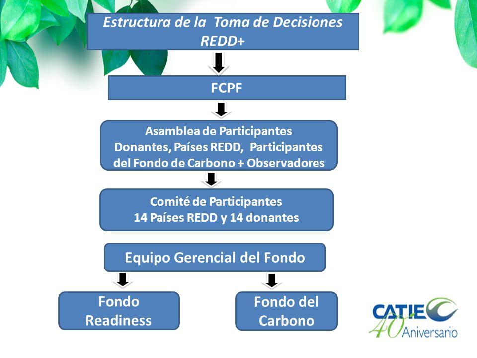 Estructura de la Toma de Decisiones REDD+ FCPF Asamblea de Participantes Donantes, Países REDD, Participantes del Fondo de Carbono + Observadores Comité de Participantes 14 Países REDD y 14 donantes Fondo Readiness Fondo del Carbono Equipo Gerencial del Fondo