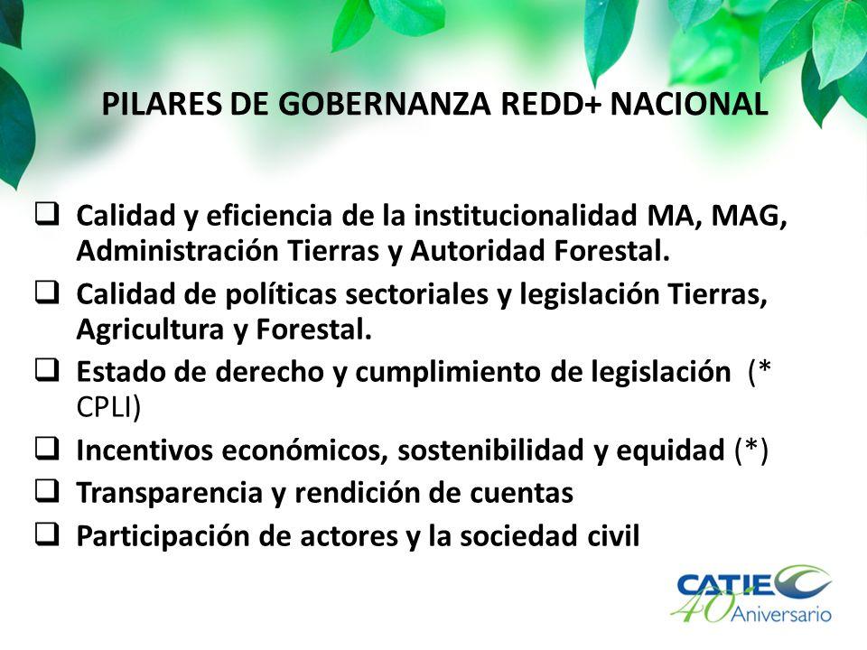 PILARES DE GOBERNANZA REDD+ NACIONAL Calidad y eficiencia de la institucionalidad MA, MAG, Administración Tierras y Autoridad Forestal. Calidad de pol