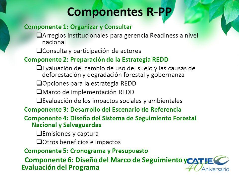 Componentes R-PP Componente 1: Organizar y Consultar Arreglos institucionales para gerencia Readiness a nivel nacional Consulta y participación de actores Componente 2: Preparación de la Estrategia REDD Evaluación del cambio de uso del suelo y las causas de deforestación y degradación forestal y gobernanza Opciones para la estrategia REDD Marco de implementación REDD Evaluación de los impactos sociales y ambientales Componente 3: Desarrollo del Escenario de Referencia Componente 4: Diseño del Sistema de Seguimiento Forestal Nacional y Salvaguardas Emisiones y captura Otros beneficios e impactos Componente 5: Cronograma y Presupuesto Componente 6: Diseño del Marco de Seguimiento y Evaluación del Programa