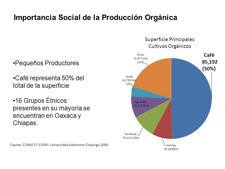Pequeños Productores Café representa 50% del total de la superficie 16 Grupos Étnicos presentes en su mayoría se encuentran en Oaxaca y Chiapas. Super