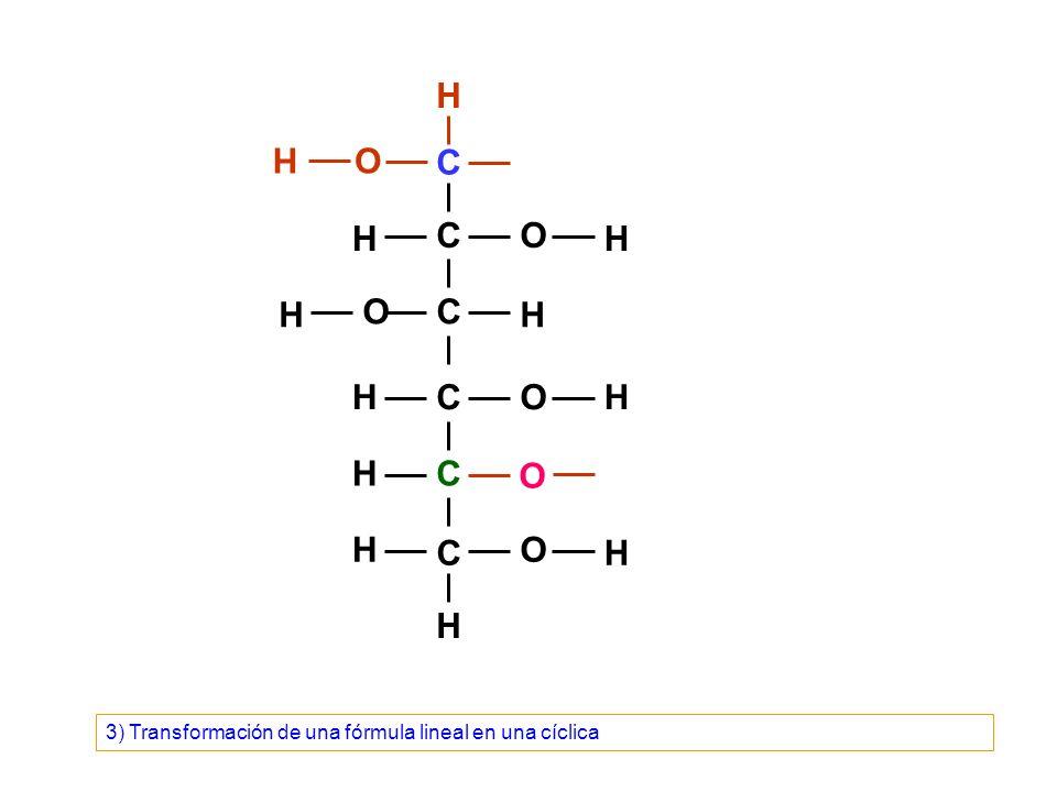 C C C C C C O O O O O H H H H OH H H H H H H H 4) Transformación de una fórmula lineal en una cíclica
