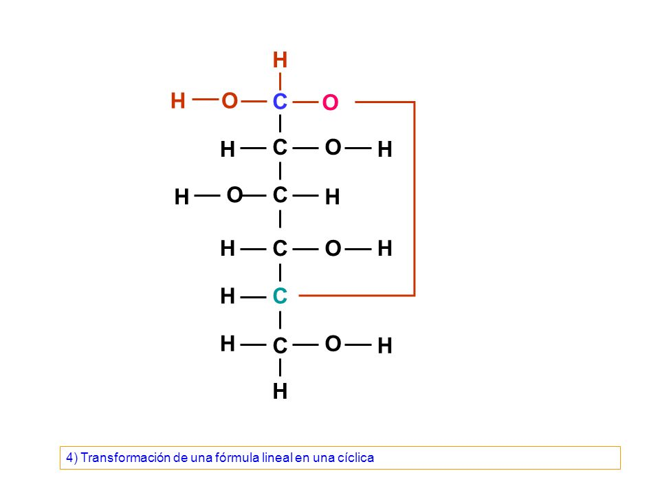 C C C C C C O O O O O H H H H OH H H H H H H H O OH H H H CH 2 OH H OH C C C H C C Para proyectar la fórmula cíclica de una aldohexosa según la proyección de Haworth, esto es perpendicular al plano de escritura, el carbono 1 o carbono anomérico se coloca a la derecha, los carbonos 2 y 3 hacia delante, el carbono 4 a la izquierda y el carbono 5 y el oxígeno del anillo hacia detrás.