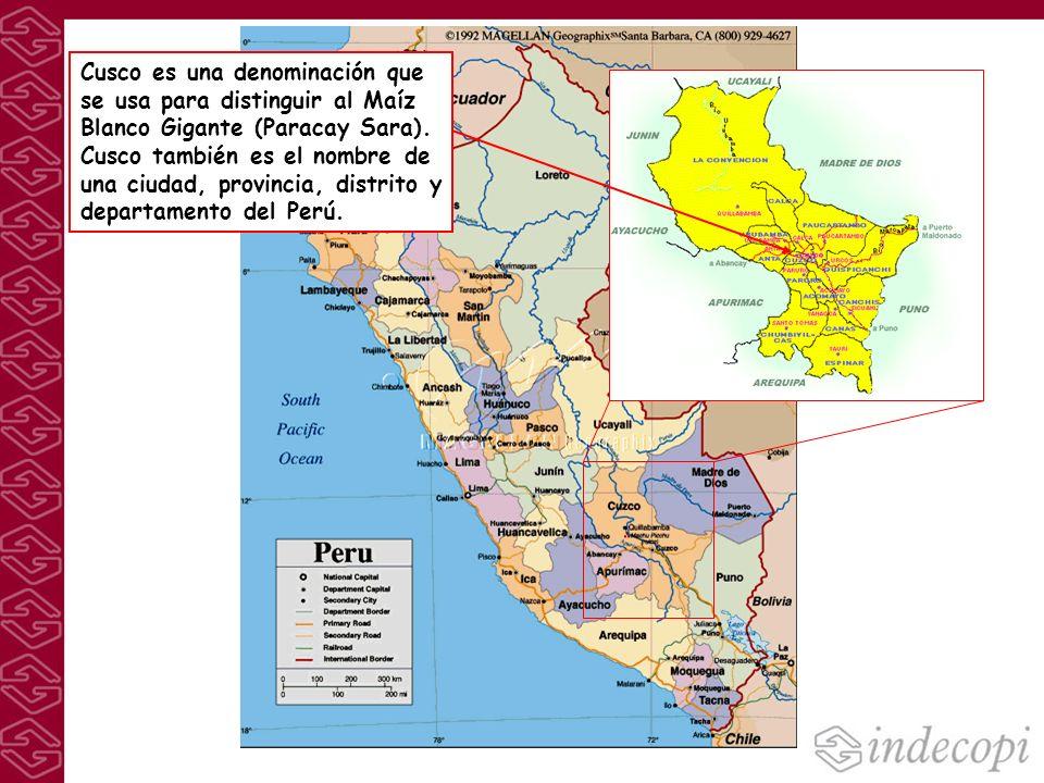 Cusco es una denominación que se usa para distinguir al Maíz Blanco Gigante (Paracay Sara). Cusco también es el nombre de una ciudad, provincia, distr