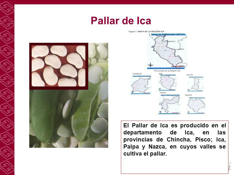 Pallar de Ica El Pallar de Ica es producido en el departamento de Ica, en las provincias de Chincha, Pisco; Ica, Palpa y Nazca, en cuyos valles se cul