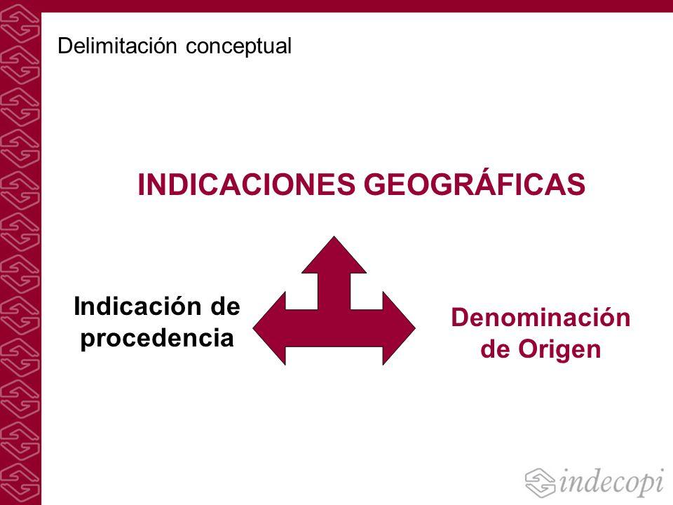 INDICACIONES GEOGRÁFICAS Indicación de procedencia Denominación de Origen Delimitación conceptual