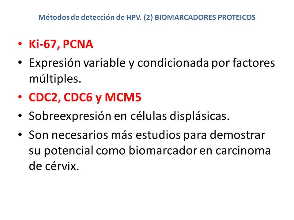 Métodos de detección de HPV. (2) BIOMARCADORES PROTEICOS Ki-67, PCNA Expresión variable y condicionada por factores múltiples. CDC2, CDC6 y MCM5 Sobre