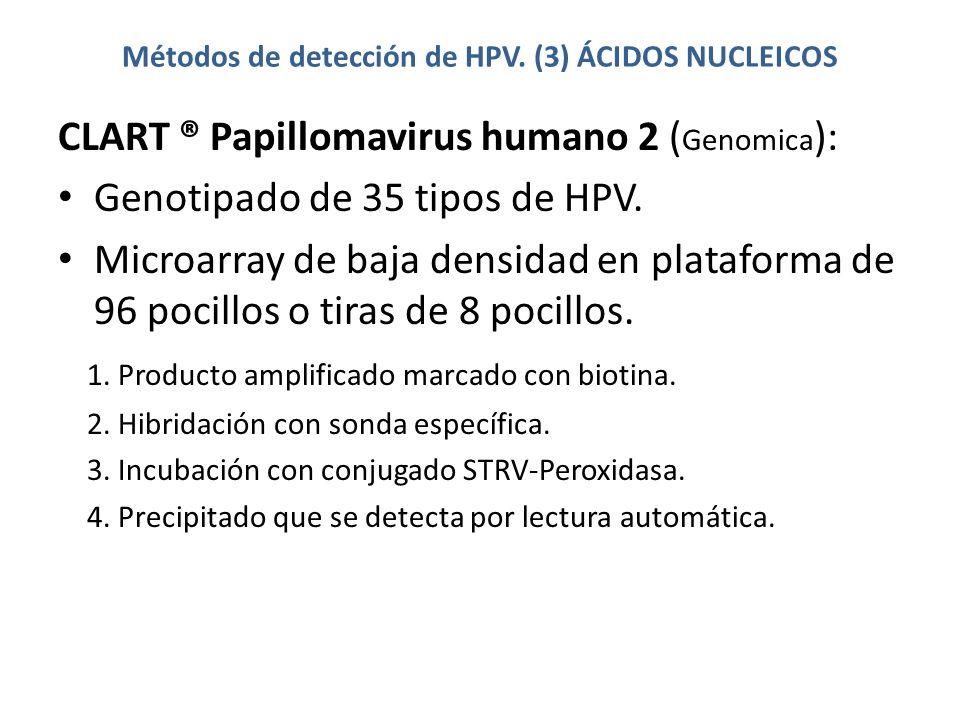 Métodos de detección de HPV. (3) ÁCIDOS NUCLEICOS CLART ® Papillomavirus humano 2 ( Genomica ): Genotipado de 35 tipos de HPV. Microarray de baja dens