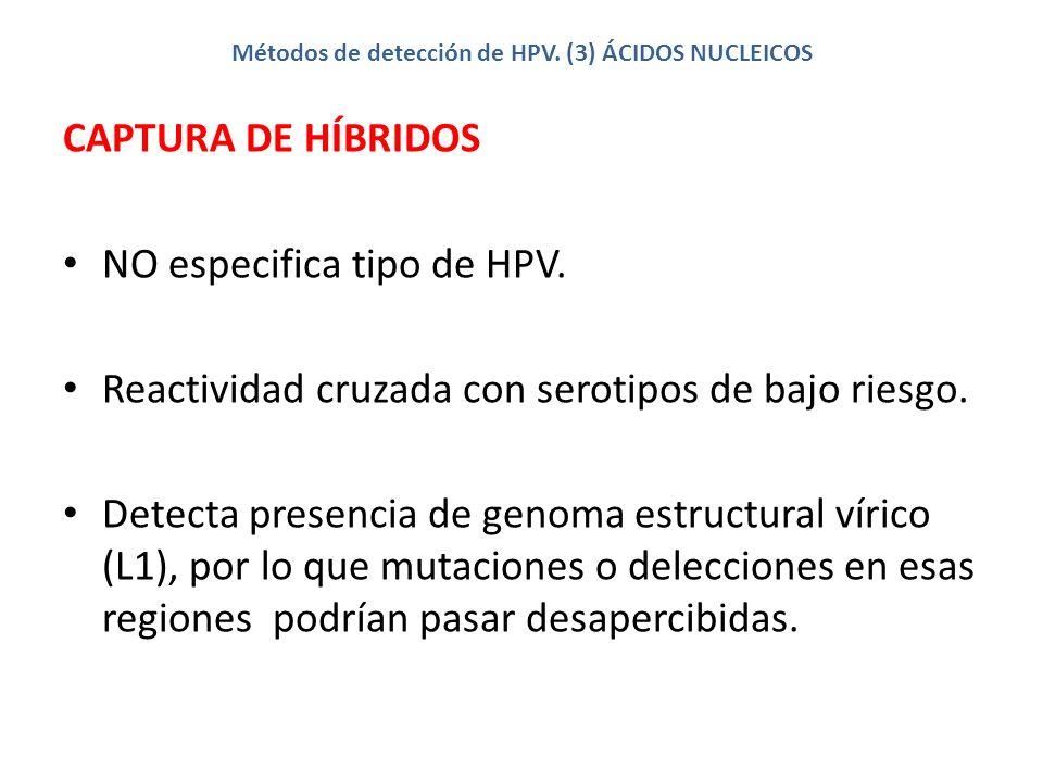 Métodos de detección de HPV. (3) ÁCIDOS NUCLEICOS CAPTURA DE HÍBRIDOS NO especifica tipo de HPV. Reactividad cruzada con serotipos de bajo riesgo. Det