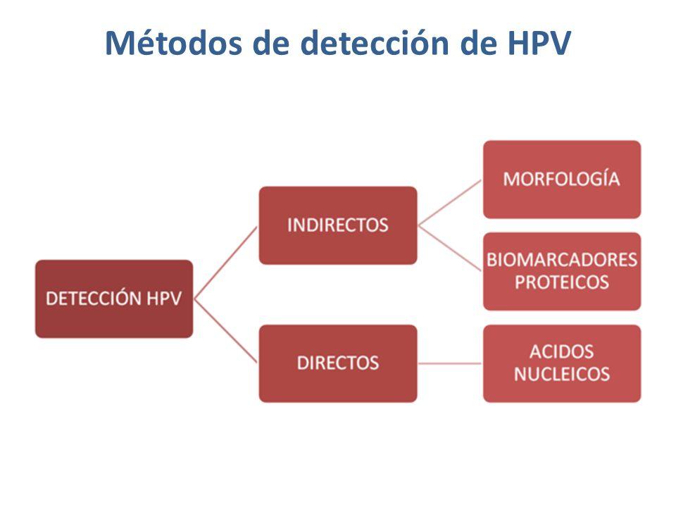 Métodos de detección de HPV.(1) MORFOLOGÍA LIMITACIONES: 1.Sensibilidad para H-SIL 60- 80%.