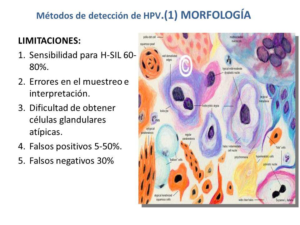 Métodos de detección de HPV.