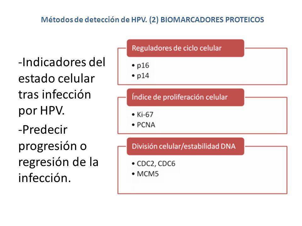 Métodos de detección de HPV. (2) BIOMARCADORES PROTEICOS -Indicadores del estado celular tras infección por HPV. -Predecir progresión o regresión de l