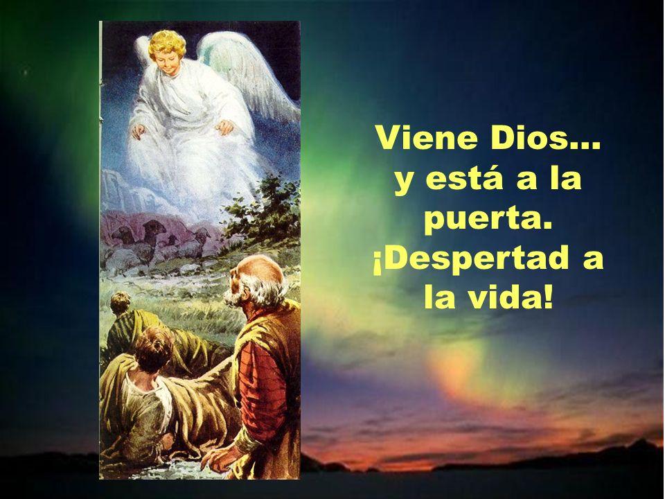 Viene Dios. Avivad alegría, paz y esperanza. Preparad el camino. Ya llega nuestro Salvador.