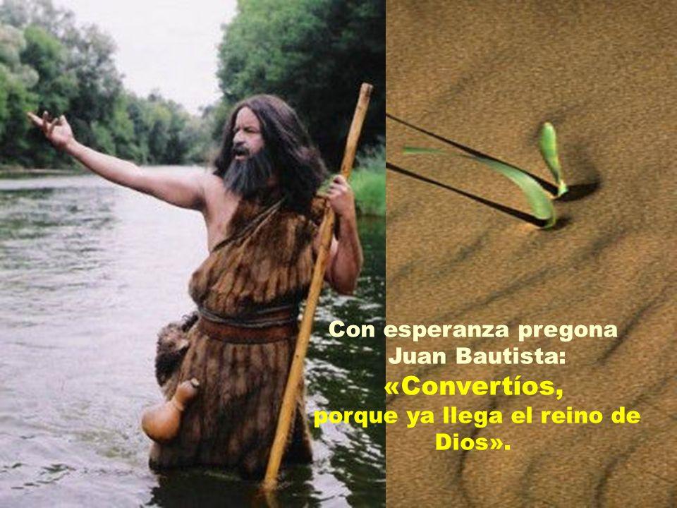 Con esperanza pregona Juan Bautista: «Convertíos, porque ya llega el reino de Dios».