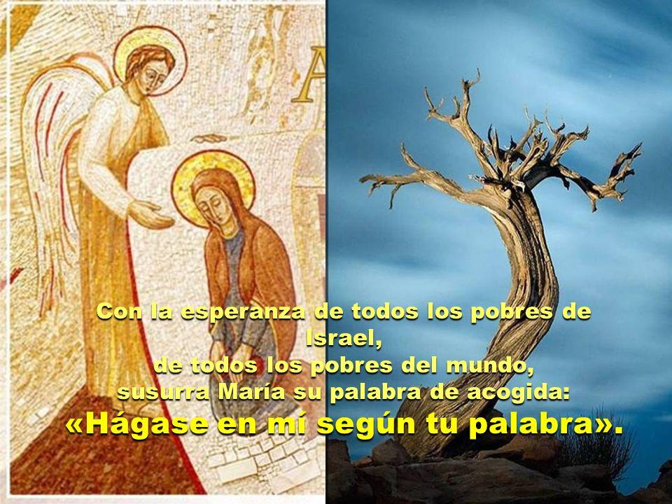 Con la esperanza de todos los pobres de Israel, de todos los pobres del mundo, susurra María su palabra de acogida: «Hágase en mí según tu palabra».