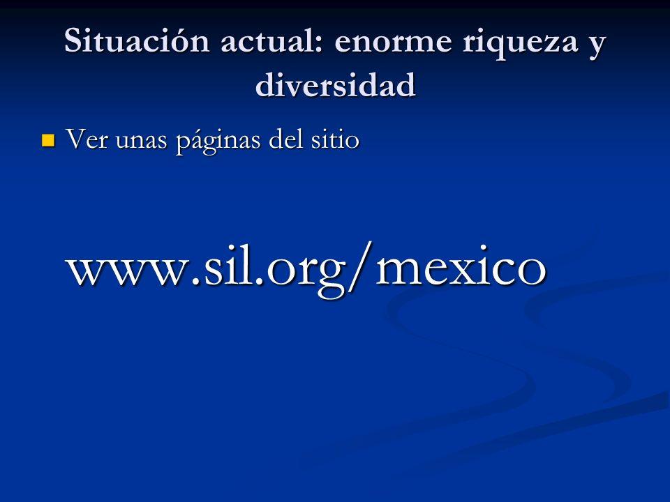 Situación actual: enorme riqueza y diversidad Ver unas páginas del sitio www.sil.org/mexico Ver unas páginas del sitio www.sil.org/mexico