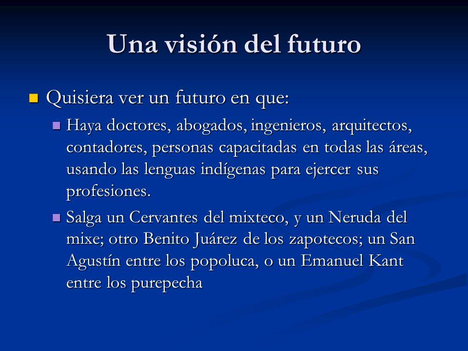 Una visión del futuro Quisiera ver un futuro en que: Quisiera ver un futuro en que: Haya doctores, abogados, ingenieros, arquitectos, contadores, personas capacitadas en todas las áreas, usando las lenguas indígenas para ejercer sus profesiones.