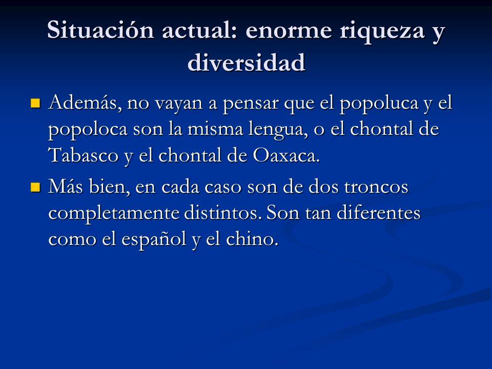 Situación actual: enorme riqueza y diversidad Además, no vayan a pensar que el popoluca y el popoloca son la misma lengua, o el chontal de Tabasco y el chontal de Oaxaca.