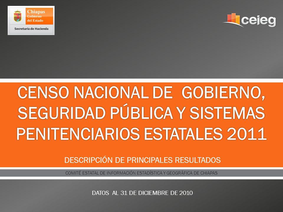 DESCRIPCIÓN DE PRINCIPALES RESULTADOS DATOS AL 31 DE DICIEMBRE DE 2010 COMITÉ ESTATAL DE INFORMACIÓN ESTADÍSTICA Y GEOGRÁFICA DE CHIAPAS