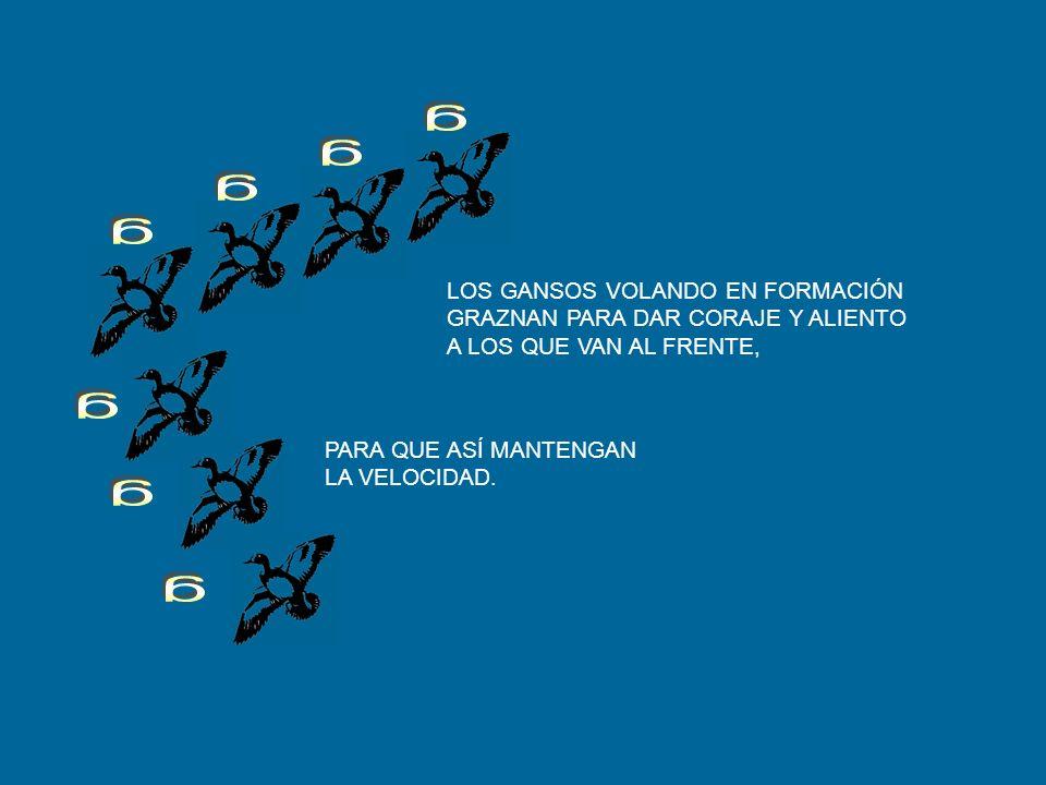LECCIÓN 3: COMPARTIR EL LIDERAZGO. RESPETARNOS MUTUAMENTE EN TODO MOMENTO. COMPARTIR LOS PROBLEMAS Y LOS TRABAJOS MÁS DIFICILES. REUNIR HABILIDADES Y
