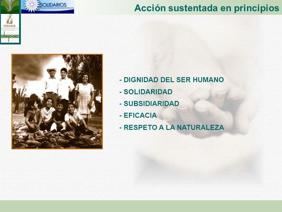 Acción sustentada en principios - DIGNIDAD DEL SER HUMANO - SOLIDARIDAD - SUBSIDIARIDAD - EFICACIA - RESPETO A LA NATURALEZA